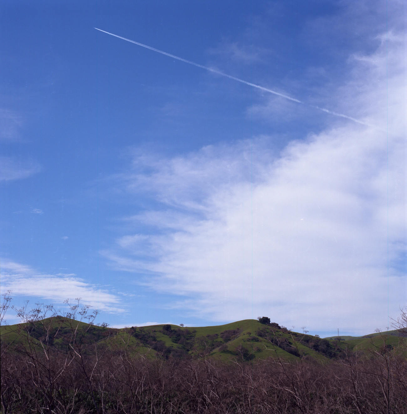 Contrail emerges from a cloud bank and keeps ascending to the left into the blue sky over the hills east of Bailey Avenue.