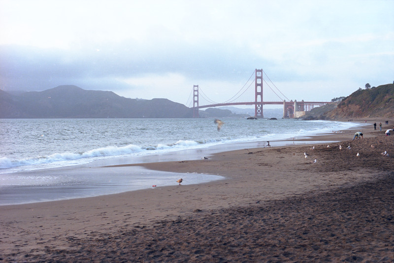 Baker Beach under overcast and with fog moving in; Golden Gate Bridge in the distance and Marin Headlands visible at left. Seagulls and a few people on the sand; one seagull flies across the picture in a blur, just below the bridge.