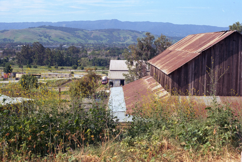 Basilica barn with rusted corrugated iron roof, garden and grasses foreground. In the distance, the valley, then a range of hills, and far distant the coast range, all in winter green. Santa Clara County.