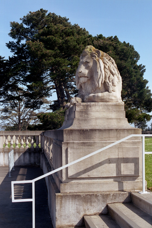 One of a pair of stone sculptures of lions guarding the entrance to the California Palace of the Legion of Honor, this one lying majestically on his platform on the wall surrounding the fromt lawn.