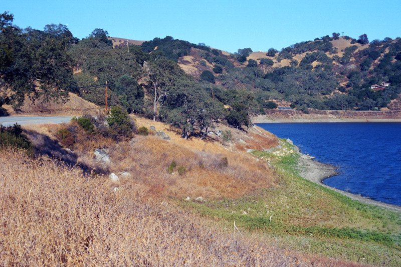 Reservoir in South Santa Clara County. Water a deep blue color; surrounding hills in drought beige, oak trees holding up in the drought
